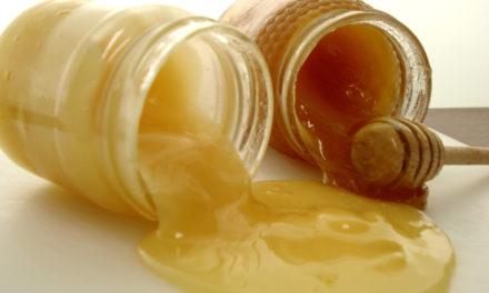 Miel ecológica, rica miel