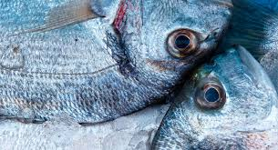 El pescado, un alimento fundamental en la dieta