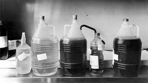 40 años del síndrome tóxico de colza y una lucha que sigue viva